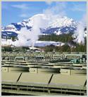 Environmental Regulations Overview