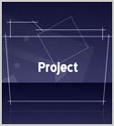 Defining Project Properties in Project 2010