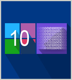 Microsoft Windows 10: Supporting Connectivity and Data Storage
